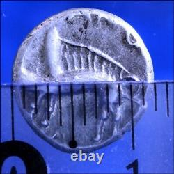 Denier Sequanes Sanglier Monnaie Gauloise Argent Fdc Seqvanoiotvos Celtic Coin